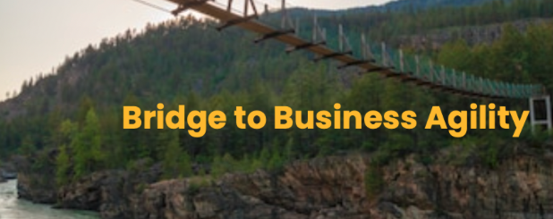 https://certificacionpm-158bf.kxcdn.com/wp-content/uploads/2020/11/The-Bridge-to-Business-Agility-Unconference-Hopin-2020-11-01-10-28-29.png